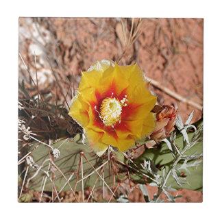 Carreau Fleur jaune et rouge de cactus en fleur