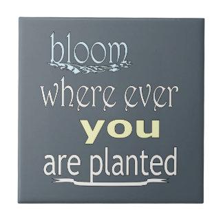 Carreau Fleur où jamais vous êtes plantés