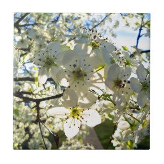 Carreau Fleurs de cerisier de Yoshino