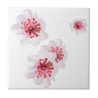 Carreau Fleurs roses de Sakura de fleurs de cerisier dans