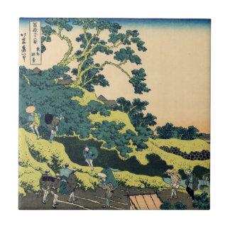 Carreau Fuji de passage de Mishima
