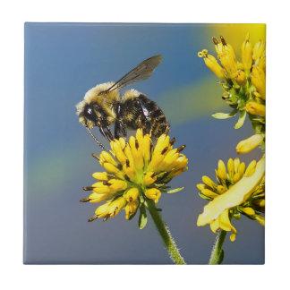 Carreau Gaffez l'abeille sur la tuile en céramique de