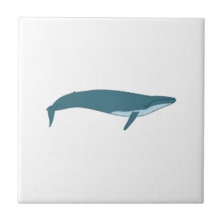 Carreau Grande baleine