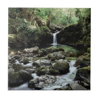 Carreau Hawaï, Maui, cascade d'A coule dans la piscine