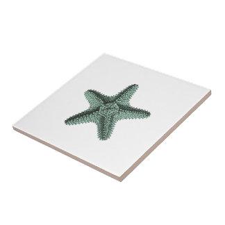 Carreau Illustration antique d'étoiles de mer de mer