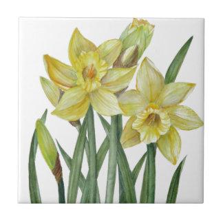 Carreau Illustration de portrait de fleur de jonquilles