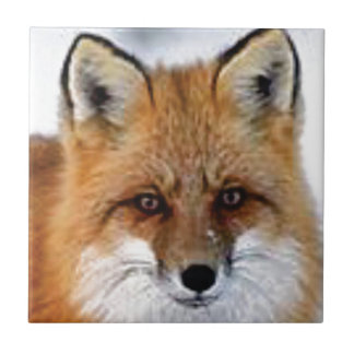 Carreau image de fantaisie de renard