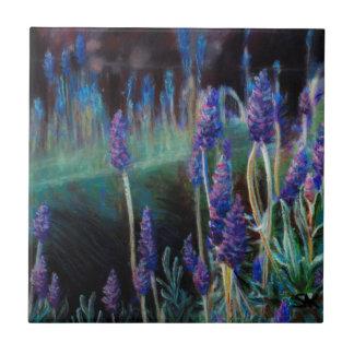Carreau Jardin par l'étang au crépuscule