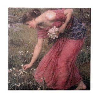 Carreau John William Waterhouse - narcisse - beaux-arts