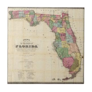 Carreau La nouvelle carte Drew's de l'État de Floride