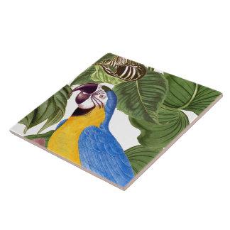 Carreau L'animal de faune d'oiseau de perroquet d'ara