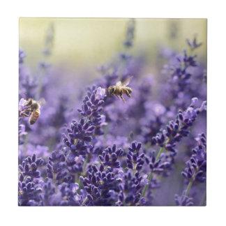 Carreau Lavande de ressort avec floral pourpre d'abeilles