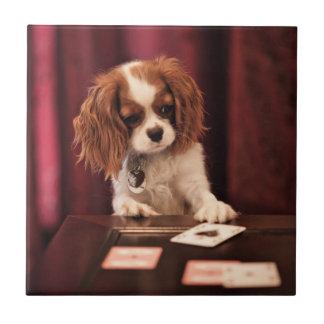 Carreau Le chiot joue aux cartes