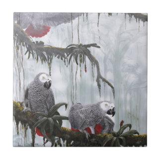 Carreau Le gris africain Parrots voler librement