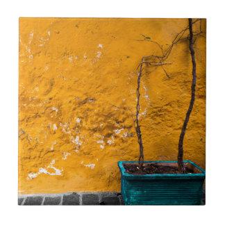 Carreau Le mur jaune