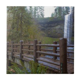 Carreau Le pont en bois à l'argent tombe parc d'état