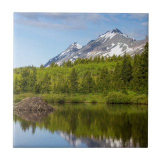 Carreau Les crêtes de montagne se reflètent dans un étang