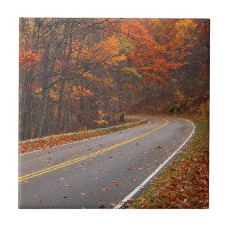 Carreau Les Etats-Unis, la Virginie, parc national de