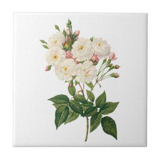 Carreau Les fleurs vintages florales rougissent Noisette