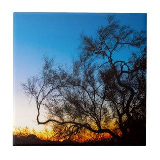 Carreau Lever de soleil de silhouette d'arbre de Palo