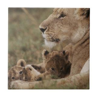 Carreau Lion de mère se reposant avec des petits animaux