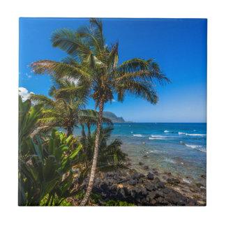 Carreau Littoral tropical