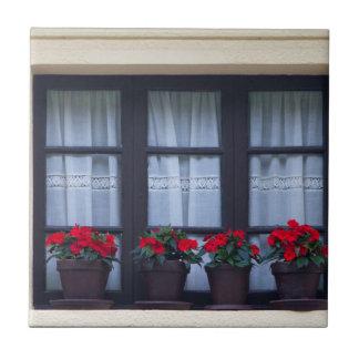 Carreau Logement résidentiel avec des fleurs dans les