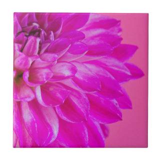 Carreau Macro image du dahlia de fleur sur le backgroun