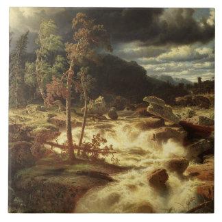 Carreau Marcus Larson - cascade dans Smaland