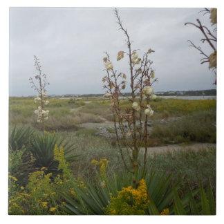 Carreau Nuages de plage et fleurs sauvages - île de chêne,