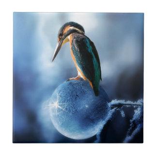 Carreau Oiseau de ronflement sur le tir congelé de macro
