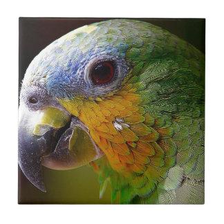 Carreau Oiseau exotique de vert d'oiseau d'animaux