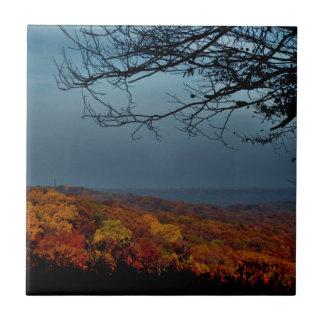 Carreau Ombre d'automne