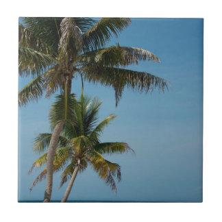 Carreau Palmier et plage blanche de sable