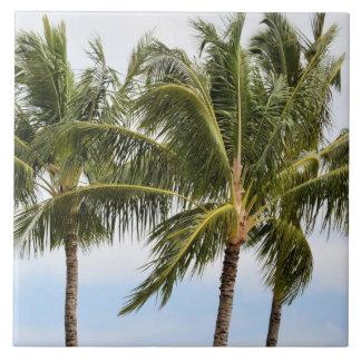 Carreau Palmiers de Kauai