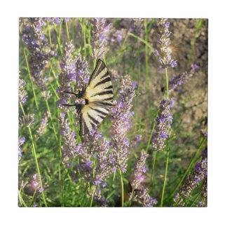 Carreau Papillon et lavande