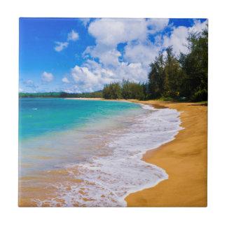 Carreau Paradis tropical de plage, Hawaï