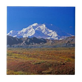 Carreau Parc national du mont McKinley Denali, Alaska