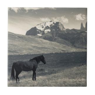 Carreau Paysage avec les chevaux 2