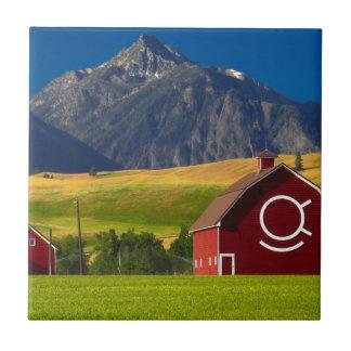 Carreau Paysage pittoresque de montagne
