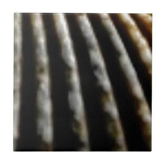 Carreau plis de brun de la coquille