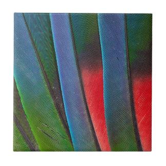 Carreau Plumes Bleu-Dirigées de perroquet