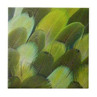Carreau Plumes vertes de perroquet d'Amazone