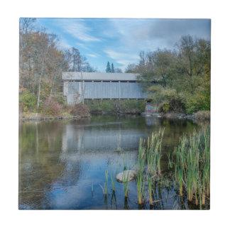 Carreau Pont couvert 2 de Milby
