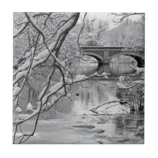 Carreau Pont de voûte au-dessus de rivière congelée en