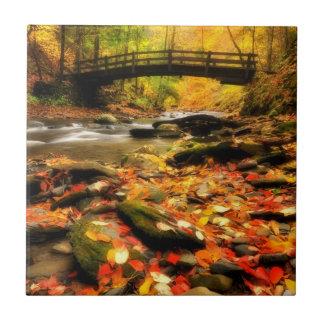 Carreau Pont en bois et crique dans l'automne