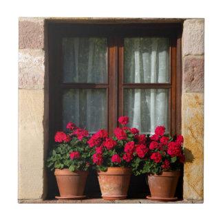 Carreau Pots de fleur de fenêtre dans le village