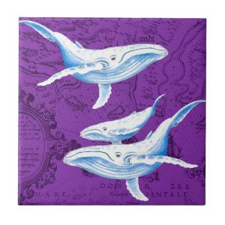 Carreau Pourpre de famille de baleines bleues