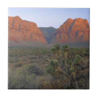 Carreau Région nationale de conservation de canyon rouge