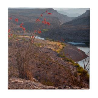 Carreau Rio Grande fonctionnant par le désert de